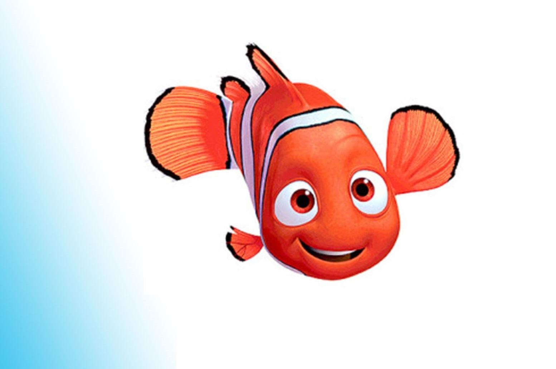 Grădinița Nemo
